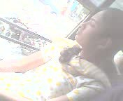 small tit cute girl on bus