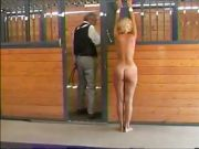 whipped in the stables
