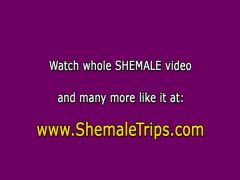 Shemale double penetrated